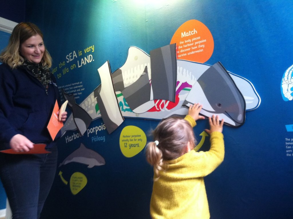 Hebdridean whale and dolphin trust escape room things to do with children on mull and iona