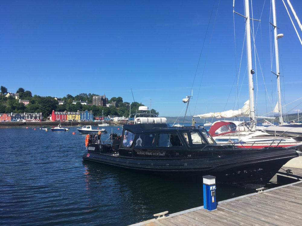 RIB boat tour at Tobermory